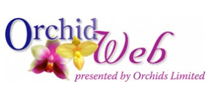 orchid-web