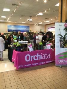 Orchiata at Asheville Orchid Festival 2016