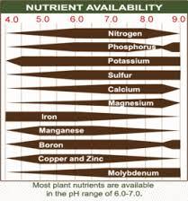 ph-impact-on-nutrient-uptake-5